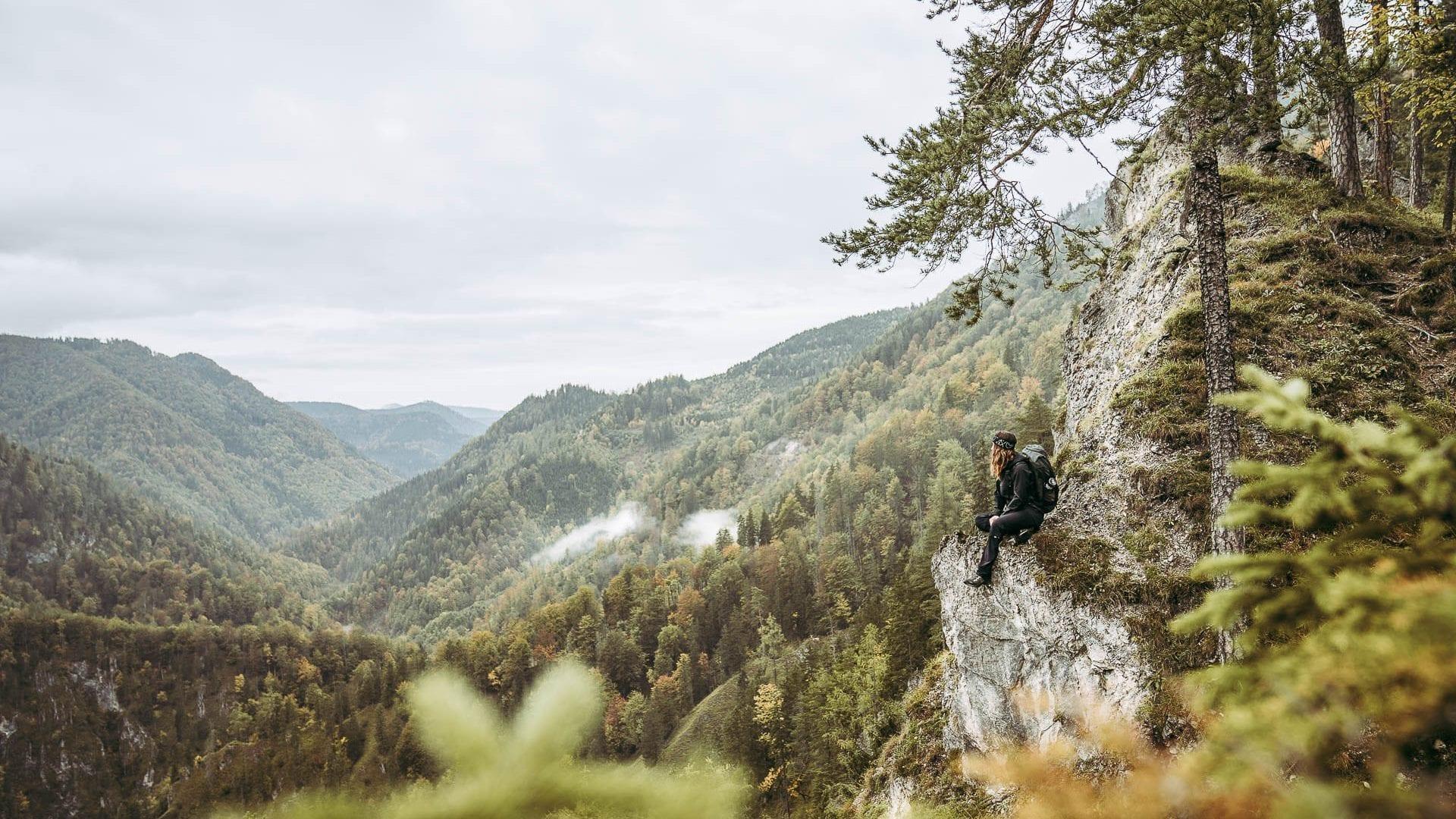 Wald- und Bergaussicht auf Etappe 2