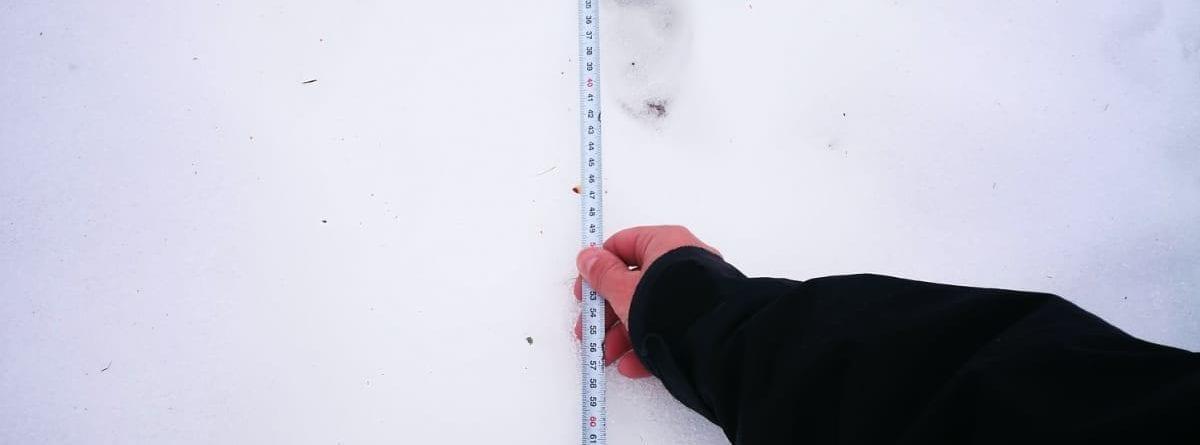 Messung des Abstandes zwischen den Spuren im Schnee
