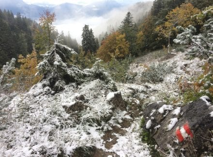 Wegweiser bei leicht angezuckerter Schneelandschaft